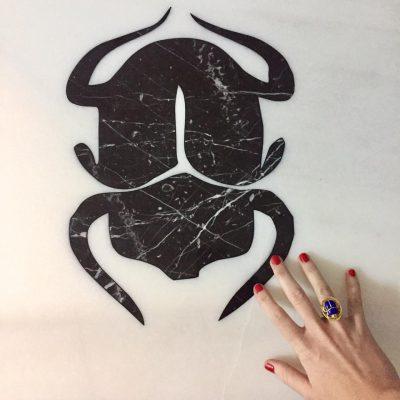 escarabajo 2